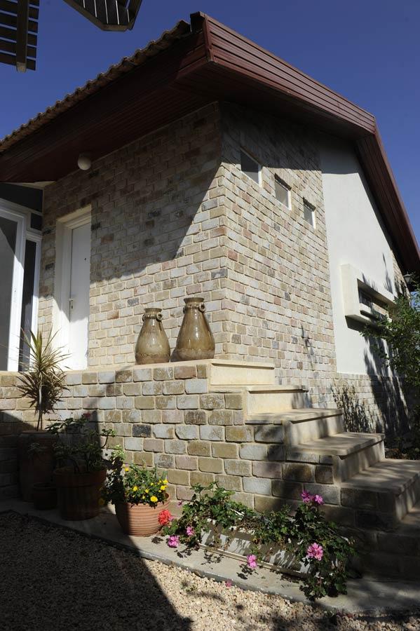 עיצוב חוץ של הבית-עיצוב חזיתות ותכנון גינה. אדריכלית אירנה פטרושקו.